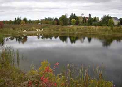 Pond-03